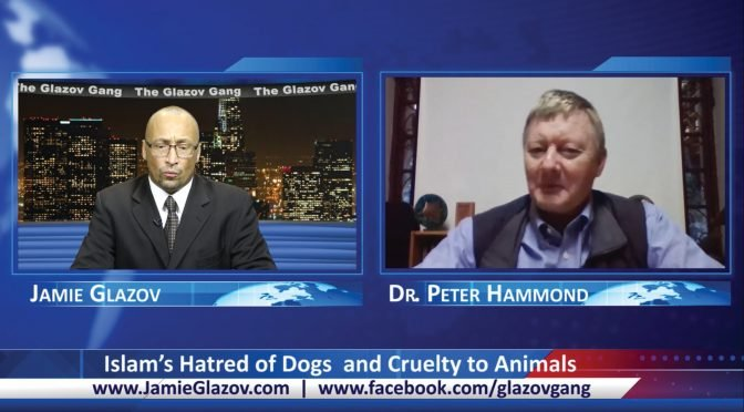 Glazov Gang: Islam's Hatred of Dogs and Cruelty to Animals